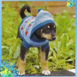Кофта с капюшоном для собачки (Вязание спицами)