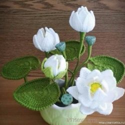 Белая кувшинка крючком (Вязаные цветы)